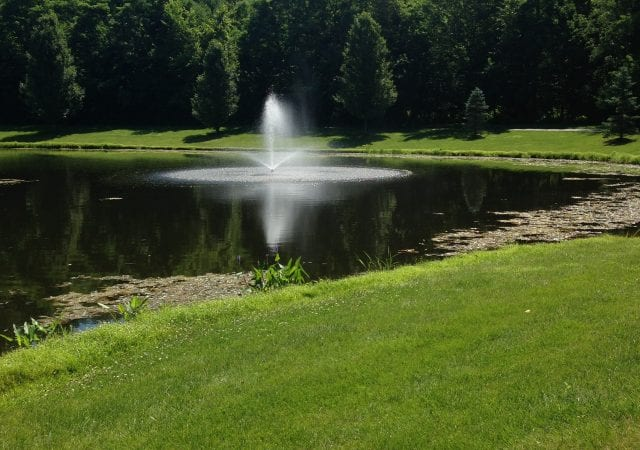 close up of a pond and a fountain