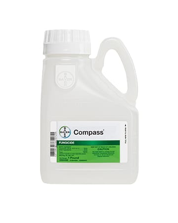 bottle of Bayer Compass