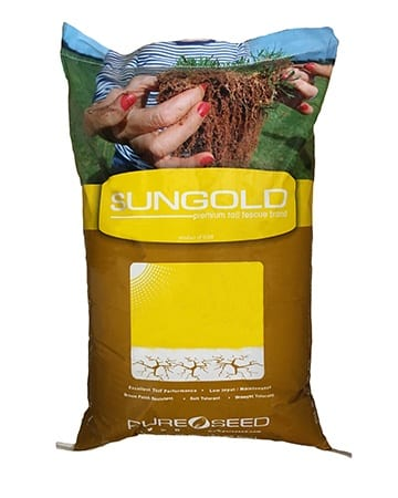 bag of sungold