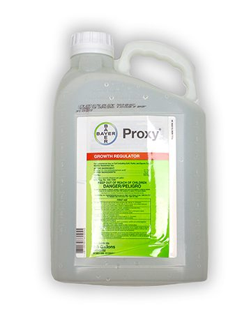 container of Bayer Proxy