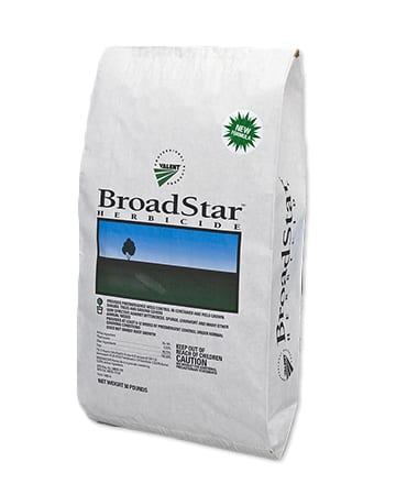 bag of BroadStar