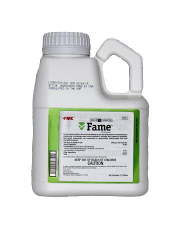 Fame SC