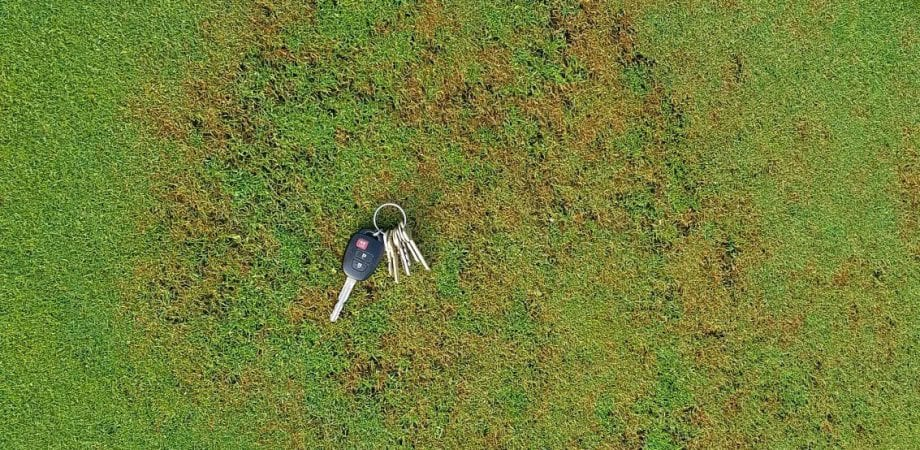 pair of keys laying on green turf