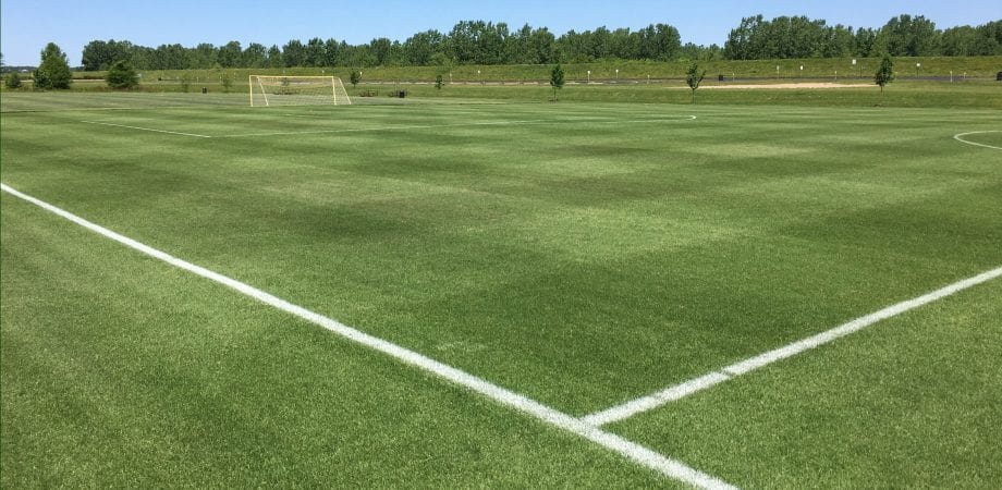 fresh lines and grass on Bluemuda Field