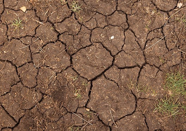 Closeup of dry soil texture in the summer