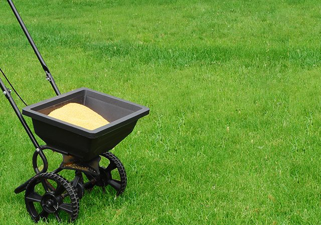 close-up of fertilizer spreader in the grass