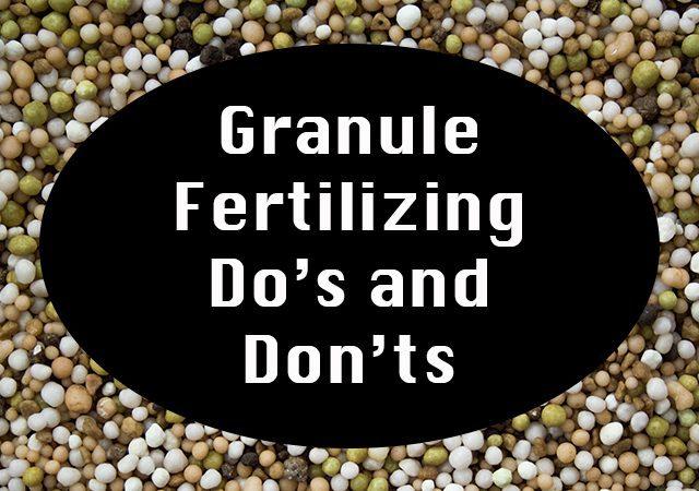Fertilizers texture background, closeup