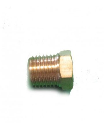 plug for outlet chamber
