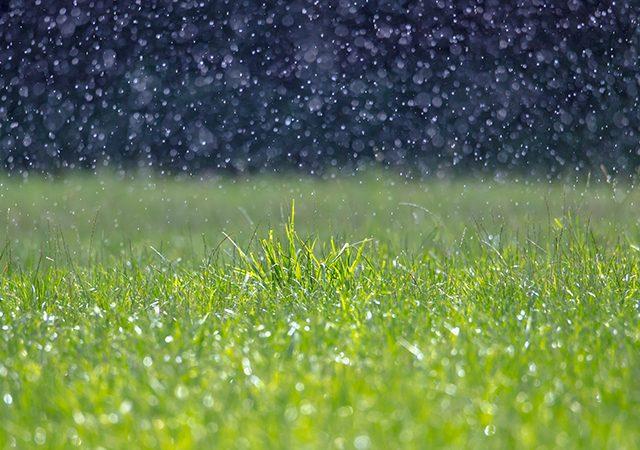 A heavy rain falls in sunshine