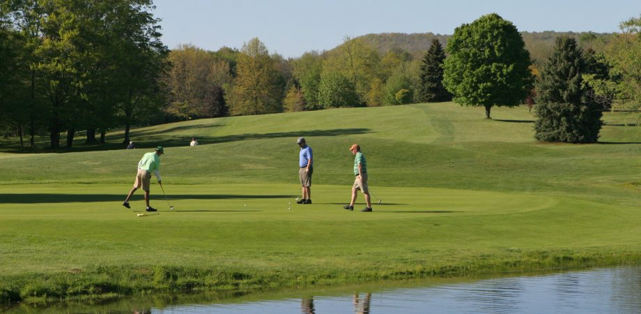 members golfing on a golf course