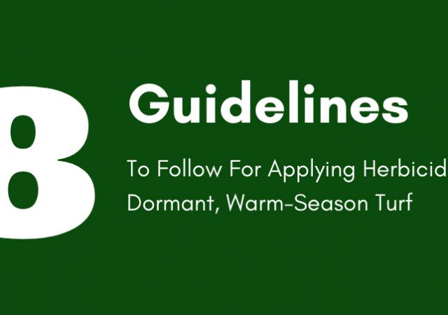 8 Guidelines to Follow For Applying Herbicides To Dormant, Warm-Season Turf