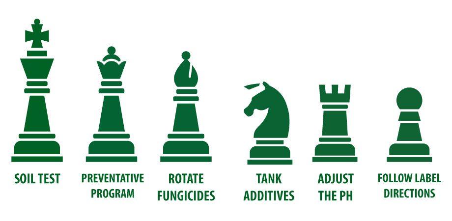 fungicide stratgies