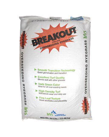 Breakout-STT