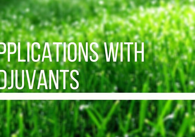 applications with adjuvants