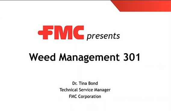 weed management 301