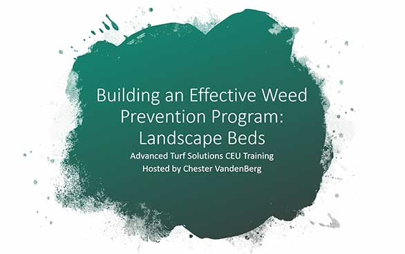building an effective weed prevention program: landscape beds